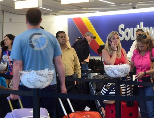Полным авиапассажирам предложили второе место бесплатно