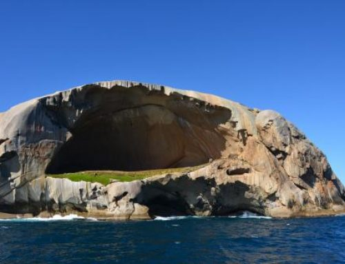 В Австралии турист упал с 40-метровой скалы в погоне за селфи