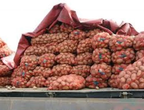Чью картошку едят граждане Азербайджана?
