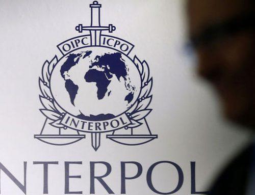 Азербайджанская полиция провела совместную с Интерполом операцию, есть задержанный