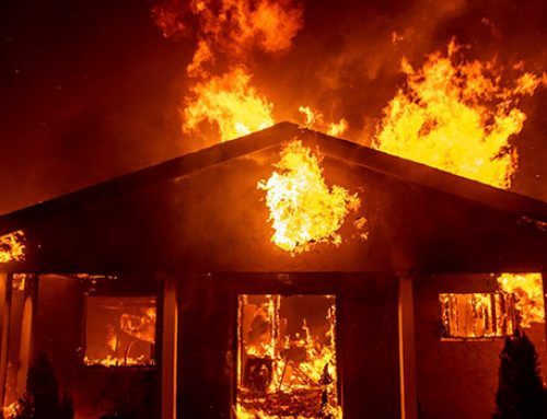 В Калифорнии в результате пожаров пропали без вести больше тысячи человек