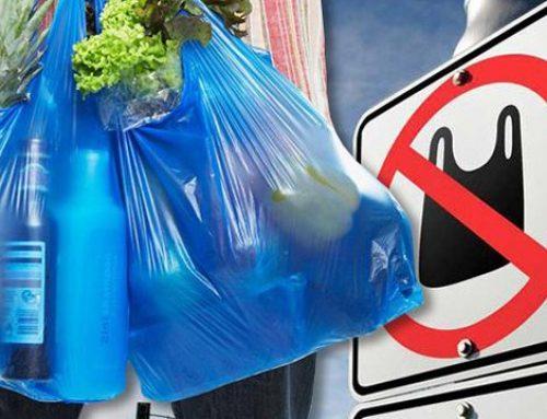 Мухтар Бабаев: Очень важно ограничить использование полиэтиленовых пакетов